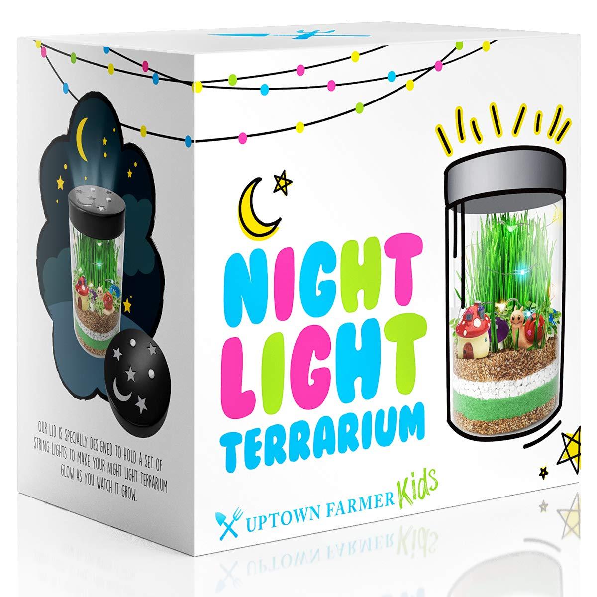 Unicorn Terrarium Kit